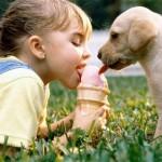 少女と犬とアイスクリーム