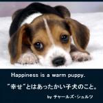 幸せ – Happiness