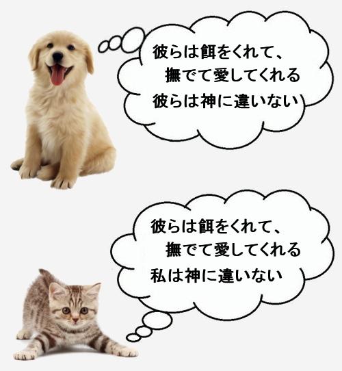 犬と猫の人間に対する考え方の違い