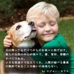 犬に纏わる名言