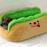 フントちゃんのお気入りベッド