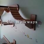 猫の足場を作ると、こんな楽しいことに…♪