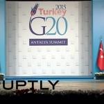 注目!|G20首脳会議の会場に厳重な警備を掻い潜って現れた猫たち