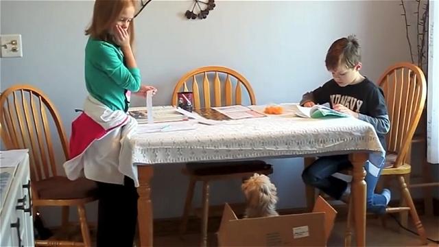 サプライズで子犬をプレゼントされ喜びが溢れ出す女の子