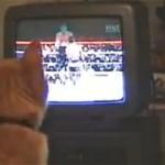 ボクシングを見ていた猫がいきなりやり始めたこと…
