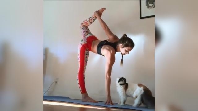 羨ましい!|ヨガのポーズをとって動けない女性に猫が取った可愛らしい行動