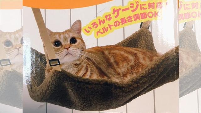 猫にハンモックを買い与えた結果、理想と現実が違っていたというお話(笑)