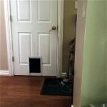 飼い主さんの期待を見事に裏切る猫の不可解な行動(笑)