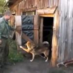ドアを閉めて小屋に閉じこもる犬。だって水浴びが嫌いなんだワン!