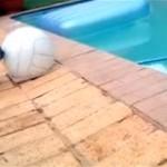 ボールで遊ぶ子犬に訪れたコントのようなオチ