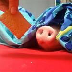 熟睡しているブタの鼻先にクッキーを近づけてみたところ・・・?
