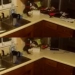 カウンターに置いてあったものがごっそり消えた!、いったい何があったの?