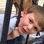 鉄柵に頭がハマって抜け出せない少年に予想外のまさかのオチが…(笑)