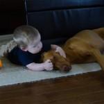 赤ちゃんの遊び相手をして疲れてしまい、嫌がる態度が見え見えなワンちゃん(笑)