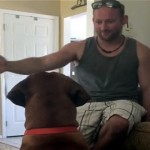 愛犬にちょっかいを出して強烈な反撃を食らった飼い主(笑)