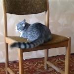 これはスゴイ!|椅子の上でアクロバティックな動きをする猫