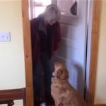 飼い主の帰宅を喜ぶワンちゃん。飼い主が「お帰りのチュー」をしようとした結果