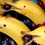 これはグッドアイデア!|誰でも簡単に作れるかわいい「バナナのイルカさん」
