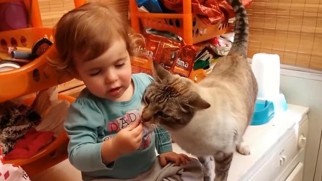 飼い猫にエサをあげる小さな女の子。給餌中に起きた可愛いハプニング