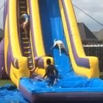 子供たちに混ざって滑り台で遊ぶワンちゃん。誰よりも楽しそう!