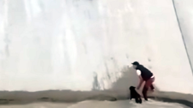 排水路に落ちた犬を見事なチームワークで救出する6人の男性たち
