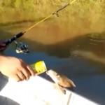 これってマジ!?|ビールを飲みながら釣りをしているおじさんのとんでもない行動