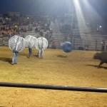 ノッカーボールを身に着けてロデオの牛と対決した結果、スゴイことに!