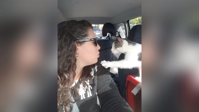 殺処分寸前だった子猫、命を救ってくれた女性に感謝の気持ちをあらわに…
