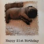 恋人から可愛いパグの写真が貼られた誕生日カードを受け取った女性。メッセージを読んでみると…