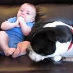 赤ちゃんのお尻から変な音が… ヤバイと思ったワンコの素早い反応(笑)