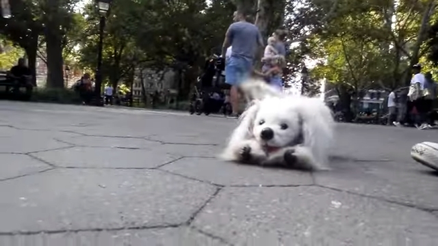 これは驚き!?|公園を散歩中のワンちゃんと思いきや、本物じゃなかった!