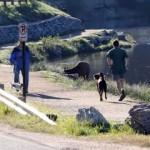 愛犬と一緒にジョギング中、思いがけないトラブルに見舞われた男性