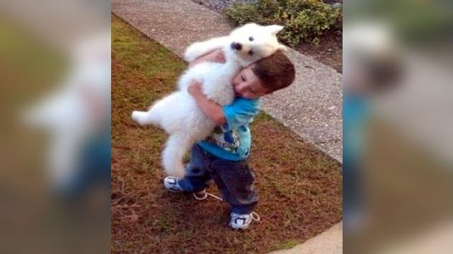 子犬を抱きかかえる少年。15年が経った現在のふたりの関係は?