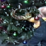 やっちまったー!?|クリスマスツリーにまつわるハプニング映像集