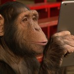 iPadを使ったマジック → 目の前のオヤツが突然消えてしまい混乱するチンパンジー