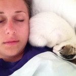 ホテルに住み着いた猫 → 頼みもしないのに宿泊客に「添い寝サービス」でおもてなし 8枚