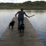 湖に放り投げた棒を追いかけて、果敢に水に飛び込むワンコと思いきや…