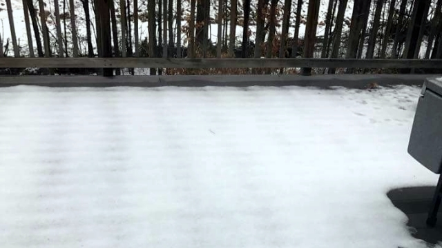 「痕跡を見ると、うちの屋根からリスが落ちたっぽい」→ その証拠となる写真がコチラ