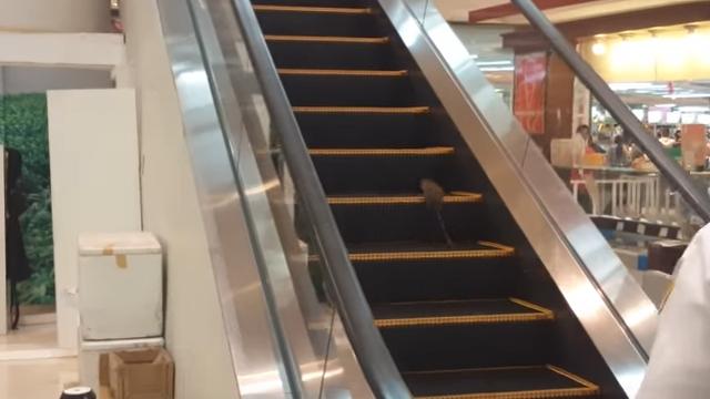 エスカレーターから抜け出せない → 無限ループに迷い込んだネズミ