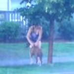 嵐の中、街路樹に繋がれて放置された犬を救出。優しい女性の行動に感動!