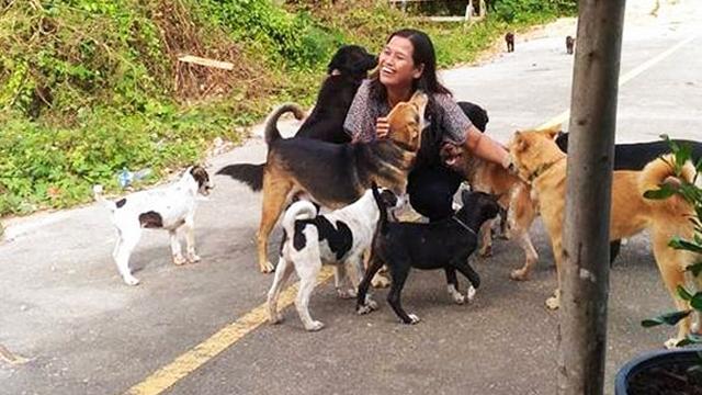 ご飯をくれる女性の元に毎回「お土産」を持ってやって来る律儀な野良犬が話題に