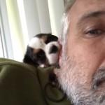 老夫婦によって保護された小さな子犬 → 愛らしい仕草は悶絶級♡