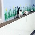 狭い一本道で鉢合わせになった2匹の子猫 → とった行動が予想外だった(笑)!