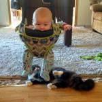 どうや、楽しいやろ? → 赤ちゃんをオモチャにして遊ぶ猫