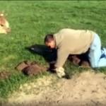 地面に開いた穴にすっぽりはまり込んだアルパカの赤ちゃんの救出劇