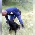 訓練中に何かを見つけた警察犬 → 確認のため警察官が向かった先には…(笑)