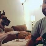 握手がしたくて前足で一生懸命アピールする愛犬 → それに飼い主が応えた結果