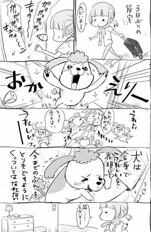 Image4720_1