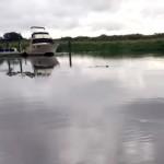 これは衝撃的!?・・・川にバケツの水を投げ入れると起こる不気味な現象
