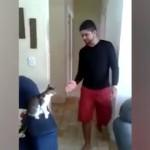 飼い主との挨拶の仕方が超クールでカッコいい猫